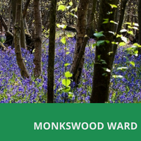 Llanbadoc home page block - monkswood ward