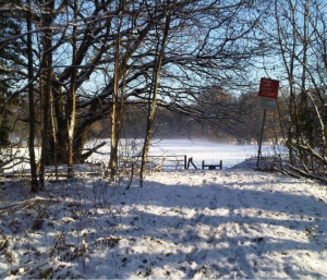 Glascoed Commons in the Snow Llanbadoc Community Council